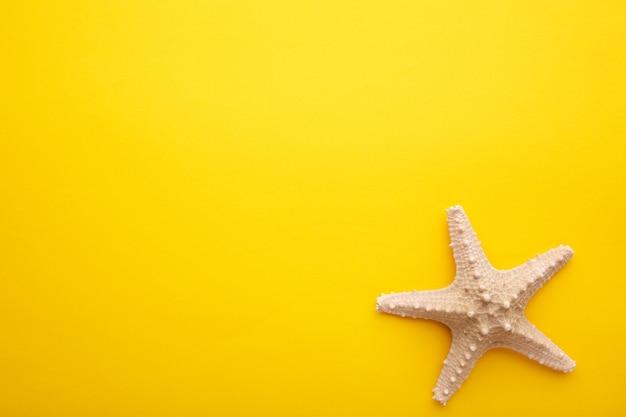 Estrela do mar do caribe em amarelo. vista superior