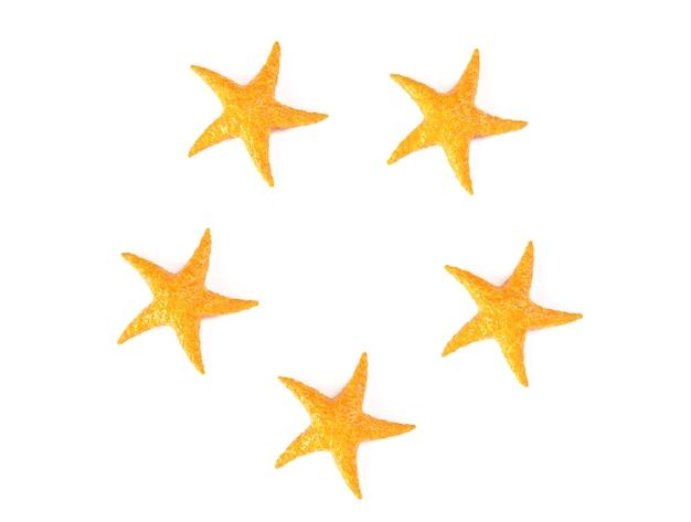 Estrela do mar do caribe em um fundo branco renderização 3d