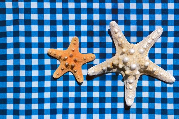 Estrela do mar e conchas em superfície azul listrada e quadriculada