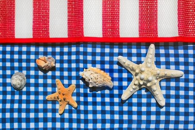 Estrela do mar e conchas em superfície multicolorida listrada e quadriculada