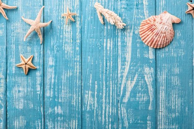 Estrela do mar e conchas na mesa