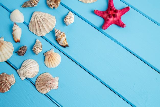 Estrela do mar e conchas sobre fundo azul de madeira.