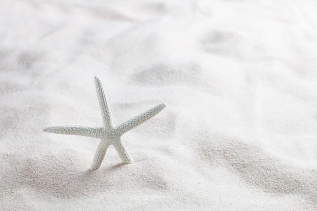 Estrela do mar na praia de areia branca linda no mar. fundo de verão conceito.
