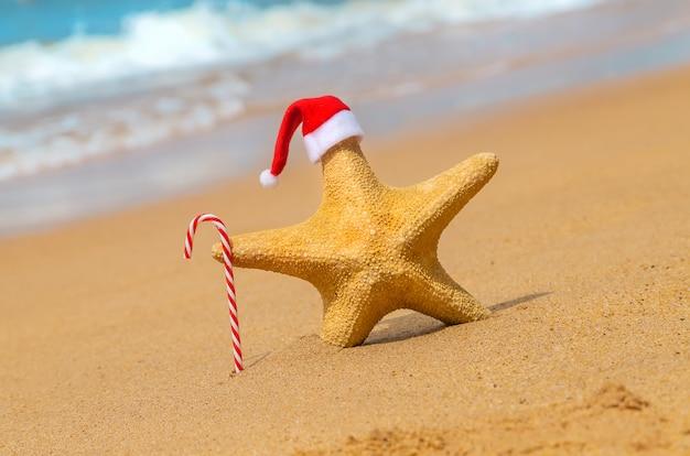 Estrela do mar papai noel na praia