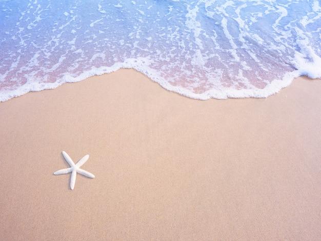 Estrela do mar pequena branca na areia e na onda de água pastel, efeito do filtro do vintage.