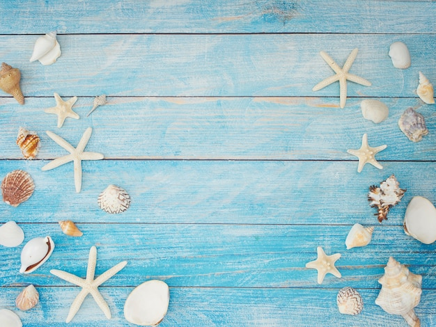 Estrela do mar sobre fundo azul claro.