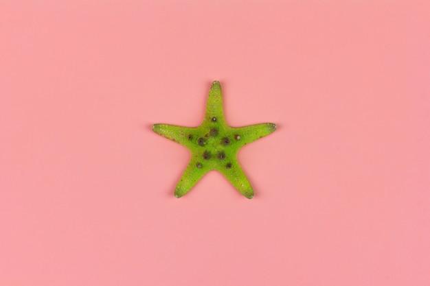 Estrela do mar verde no fundo rosa close-up, vista superior plana leigos