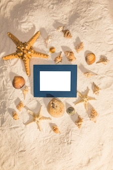 Estrelas do mar e conchas em torno do frame da foto