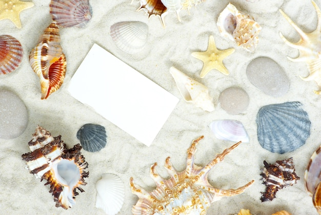 Estrelas do mar e conchas em um cartão postal em branco na areia
