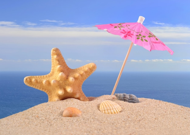 Estrelas do mar e conchas na areia da praia, contra o fundo do mar