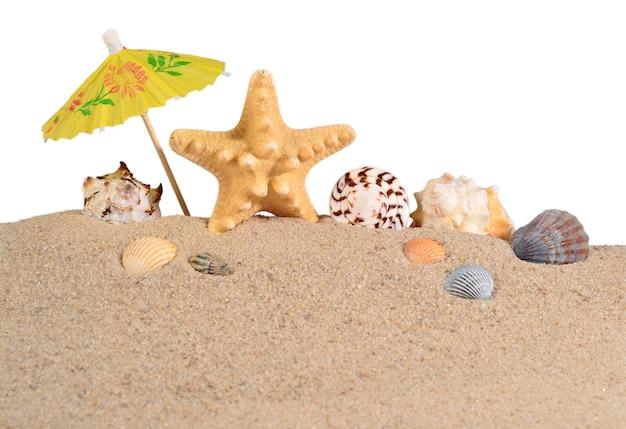 Estrelas do mar e conchas na areia da praia em um fundo branco