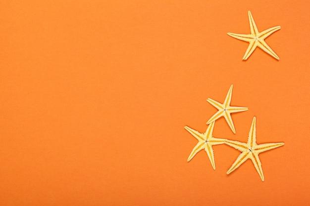 Estrelas do mar em um fundo vibrante colorido brilhante
