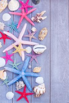 Estrelas do mar multicoloridas e conchas do mar em pranchas de madeira
