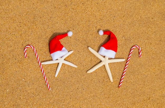 Estrelas do mar na praia com chapéus de papai noel e bastões de doces