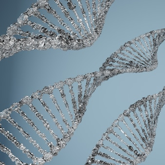 Estruturas moleculares de dna