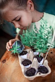 Estudante bonita crescendo ervas de cozinha