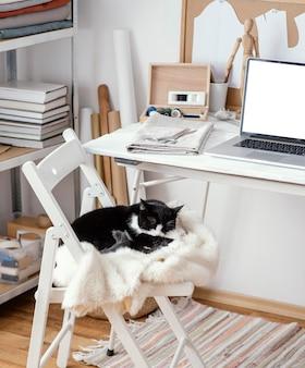 Estúdio de costura com laptop e gato