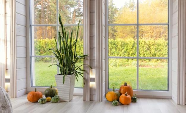 Estúdio fotográfico bem iluminado com janela grande, teto alto e piso de madeira branco