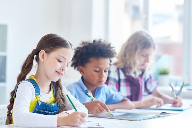 Estudiosos do ensino fundamental