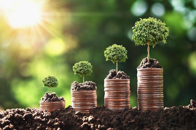 Etapa crescente do dinheiro com árvore e nascer do sol.