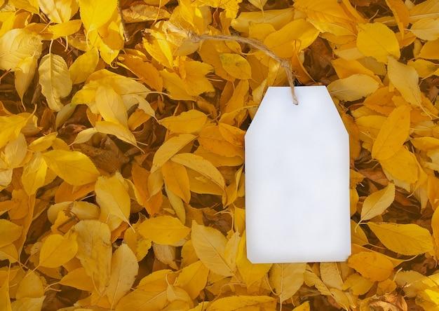 Etiqueta de papel branco em branco deitada no chão em folhas caídas de outono