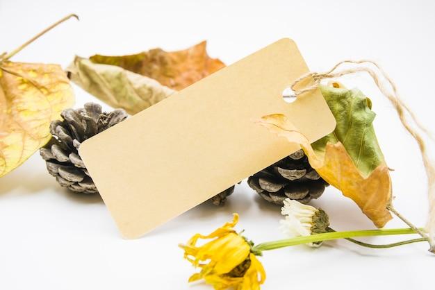 Etiqueta de sobreposição de cones e folhas