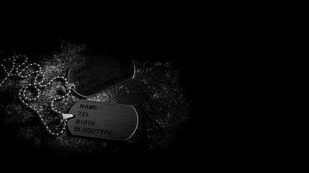 Etiquetas de cão militares em branco na placa de metal enferrujada abandonada. - conceito de memórias e sacrifícios.