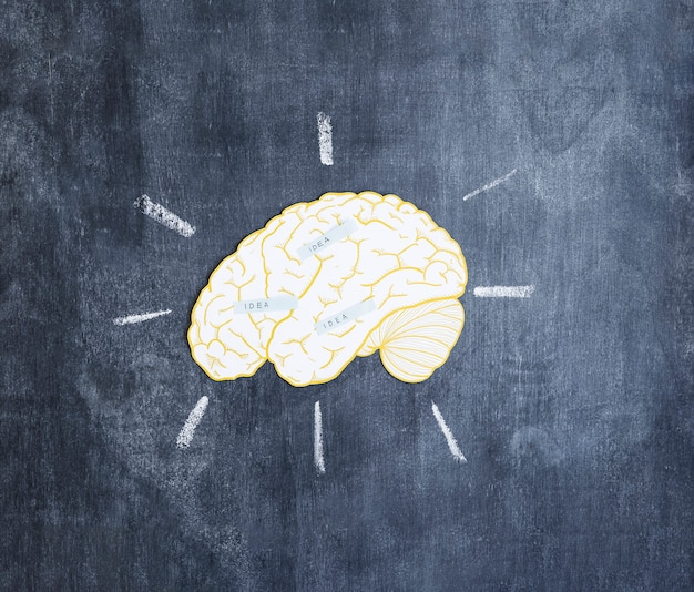 Etiquetas de ideia sobre o cérebro na lousa
