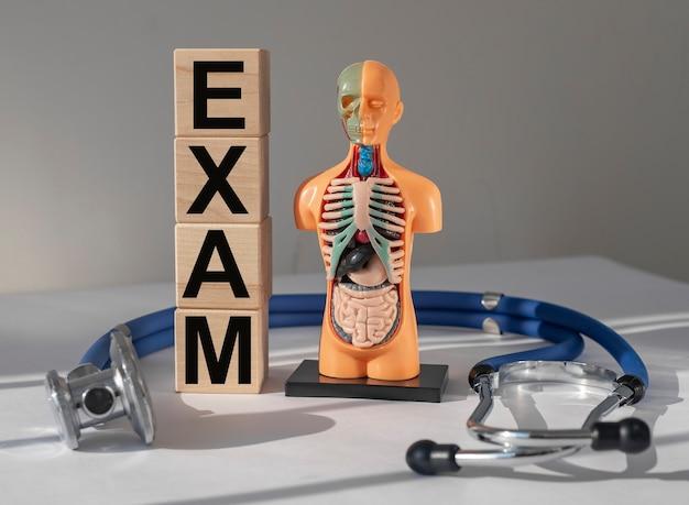 Exame médico conceito exame de órgãos internos e check-up