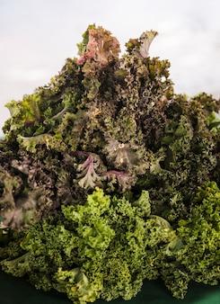 Exibição de couve orgânica madura fresca no mercado do fazendeiro