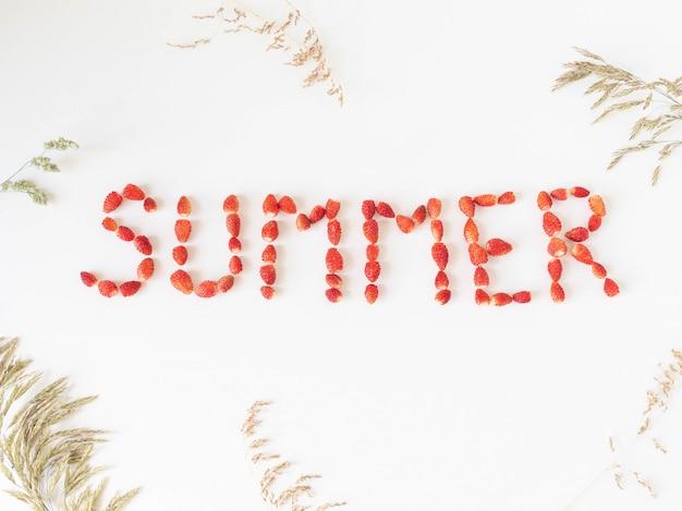 Exprima o verão criado dos morangos silvestres maduros frescos e de várias ervas selvagens em um fundo branco. vista do topo.