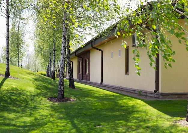 Exterior de quintal, quintal natural paisagístico, bétula e relvado na encosta.