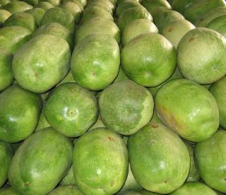 Extra melancias grandes