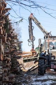 Extração ilegal de madeira, colheita de madeira para a indústria de manufatura, transporte carregado com troncos de árvores derrubadas, transporte de madeira no inverno