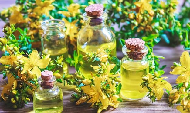 Extraia a erva de são joão em um pequeno frasco. foco seletivo. natureza