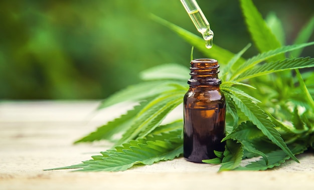 Extrato de cannabis em uma pequena garrafa. foco seletivo.