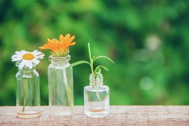 Extratos de ervas em pequenas garrafas. foco seletivo.