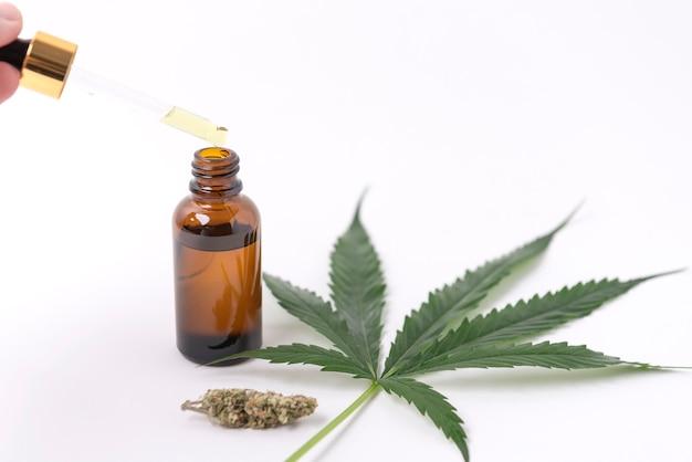 Extratos de óleo de cannabis em potes e folhas verdes de cannabis, maconha, isolada no fundo branco. cultivo de maconha medicinal e herbácea.