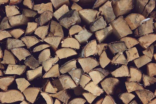 Extremidades de toras de madeira