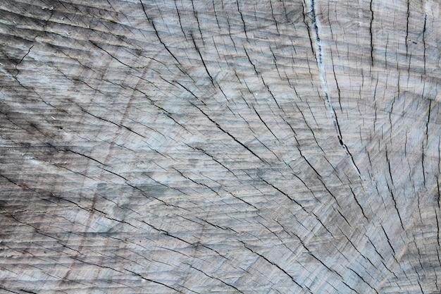 Extremidades do log de textura de madeira