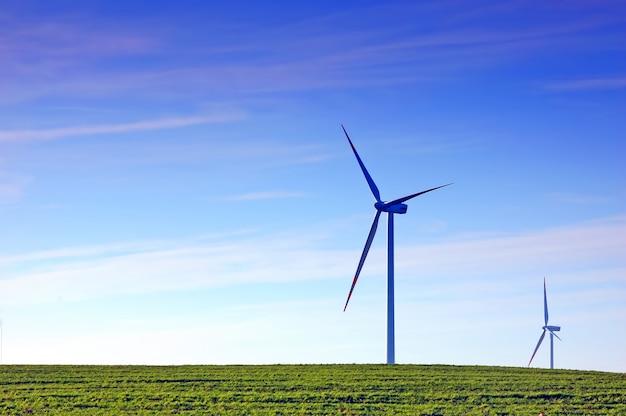 Fã de vento em um campo de grama