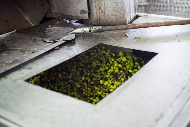 Fabricação de azeite