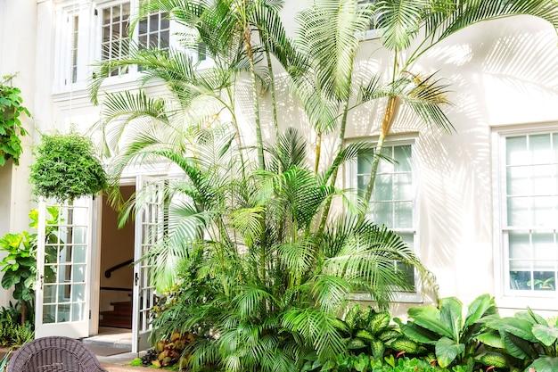 Fachada do hotel com palmeiras e plantas.