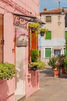 Fachada típica da casa colorida com plantas em vasos verdes no parapeito da janela e gaiola de pássaro sobre a entrada na ilha de burano, vêneto, itália