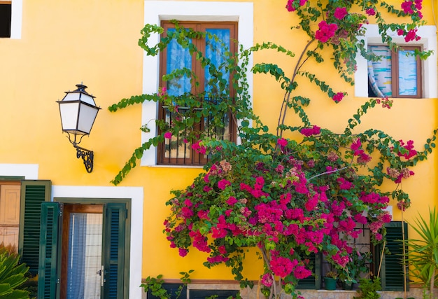 Fachadas e flores mediterrânicas de palma de maiorca em maiorca