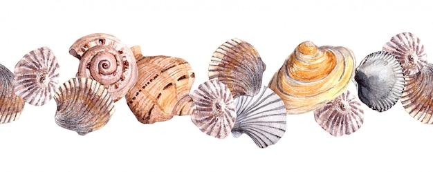 Faixa de fronteira sem costura com conchas do mar. banner em aquarela