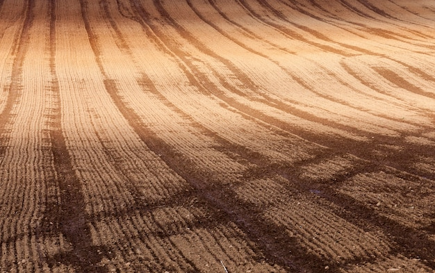 Faixas de cor escura e clara no solo marrom do campo agrícola depois que o campo foi arado
