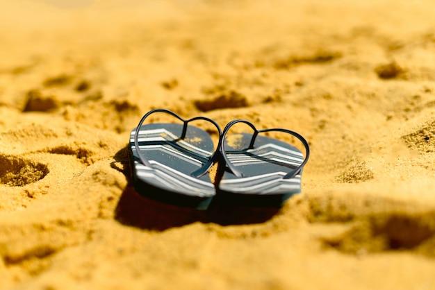 Falhanço de aleta dos azuis marinhos no fundo amarelo da praia da areia.