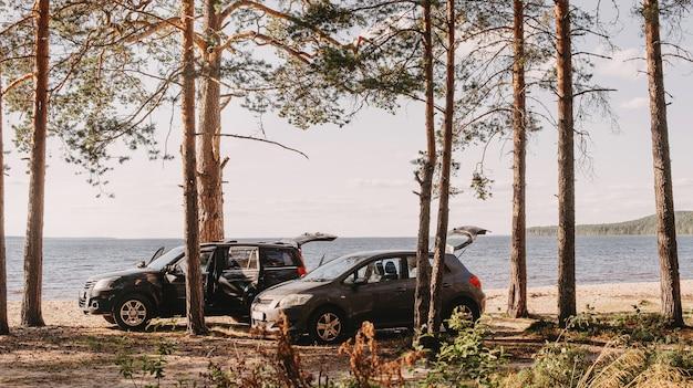 Família acampando na natureza