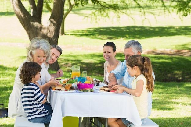Família alargada almoçando no gramado